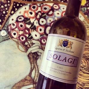 Solagi 2011